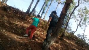 En el bosque de la Mina